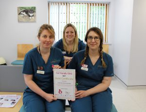 Lumbry Park veterinary nurses (left to right) Claire Dorey-Phillips, Gemma Winsor and Laura Rosewell.