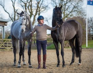 Andrew Hoy with two of his string: On the left seven-year-old gelding Brigant, by Caesar van de Helle and on the right four-year-old approved stallion OSO Monolitos, by Huzar