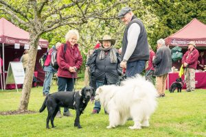 The Great British Dog Walk, an annual event held in aid of Hearing Dogs for Deaf People