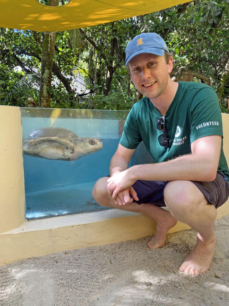 turtle rescue maldives vet