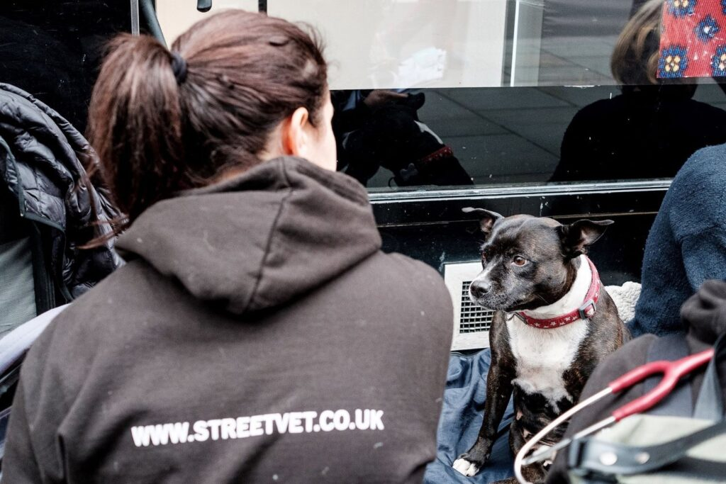 Purina PetCare to work with StreetVet charity to supply veterinary diets for pets.